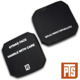 "PTS DUMMY SIDE PLATES / 6"" x 6"" (Left & Right)"
